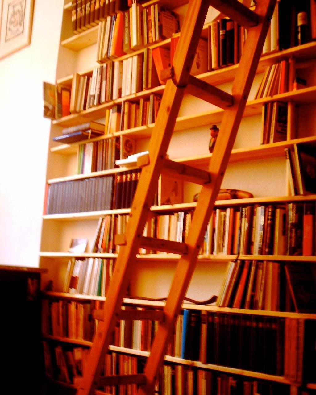 Svelte Bookshelf