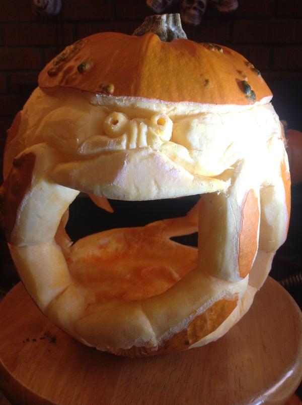 Dungeness Pumpkin