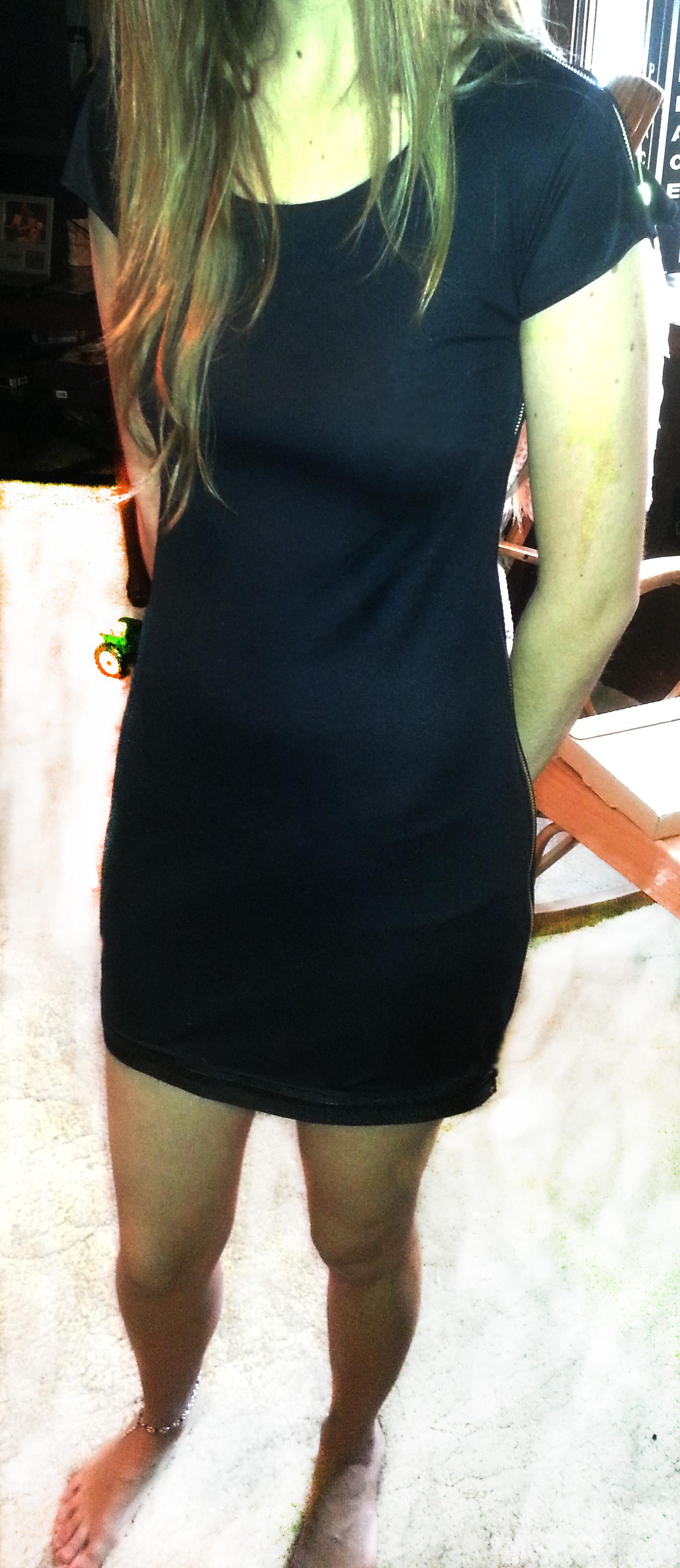 Zipper Seam Dress for the Ladies