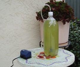 Simple Algae Home CO2 Scrubber - Part 1