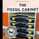 The Fossil Cabinet (Tool Storage)