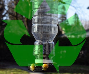 How to Make a Recycled Bird Feeder and Use It to Hand-Feed Birds