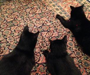 Dual Laser Pointer Cat Toy
