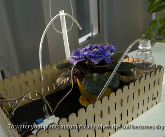 DIY an Automatic Plant Watering Device