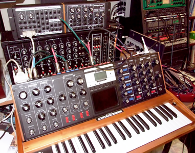Trigger Cable for Moog Synthesizer