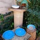 Bird Feed, Drink and Bath