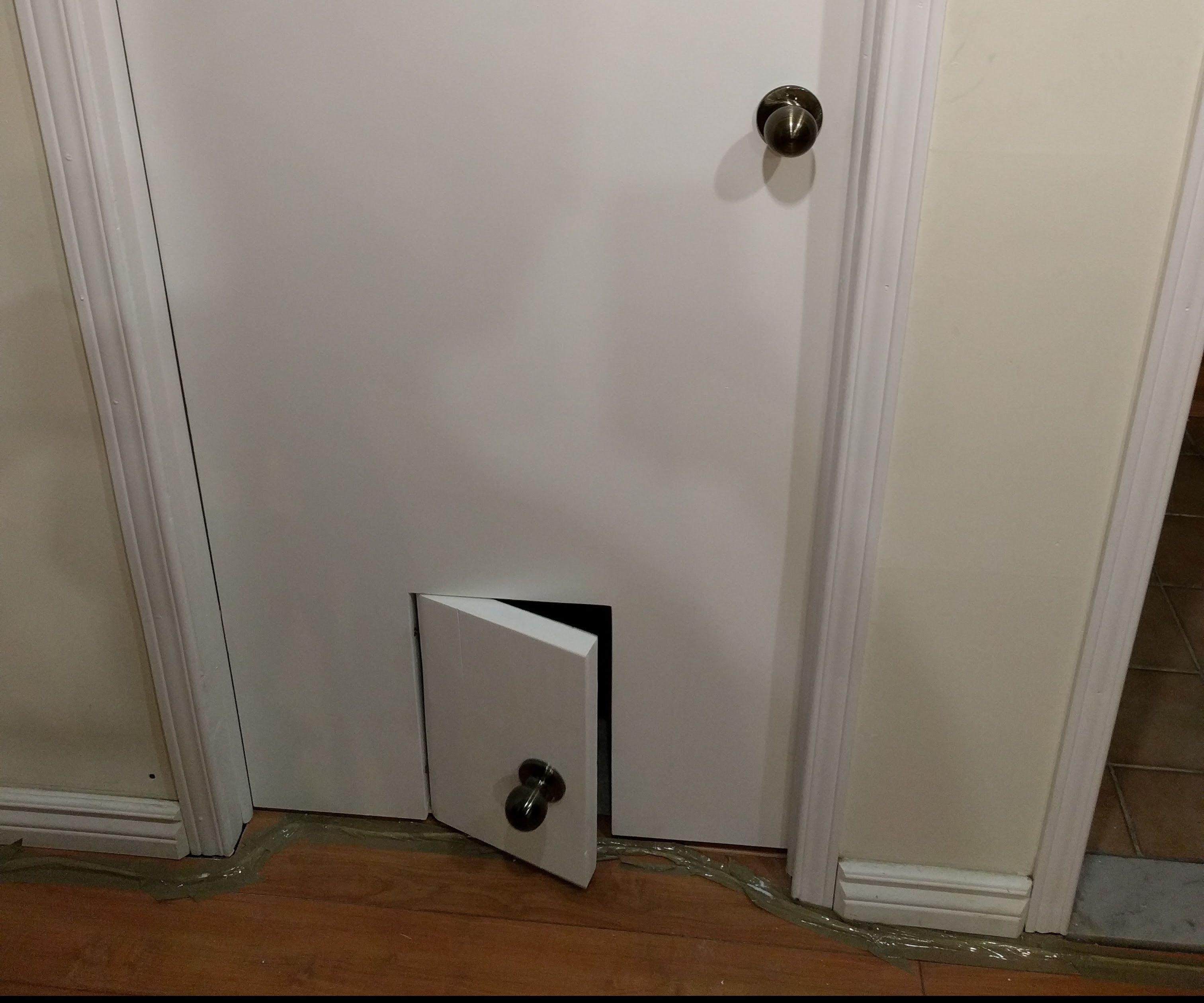 Realistic Pet Door