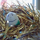 Confetti Egg Bombs!