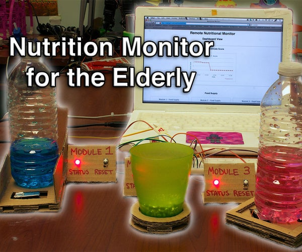Nutrition Monitor for the Elderly