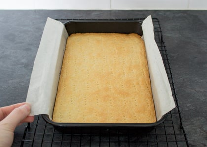 Baking the Biscuit