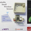 LoRa-Tooth: Small Wireless Sensors