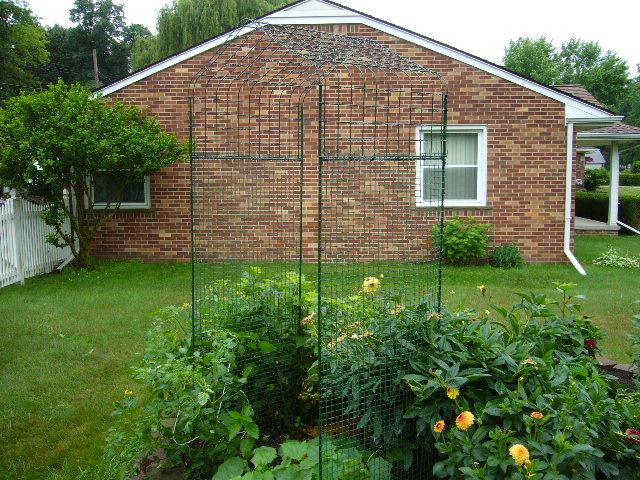 Building a trellis-arch for the garden