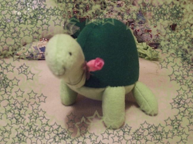 Turtle Tutorial