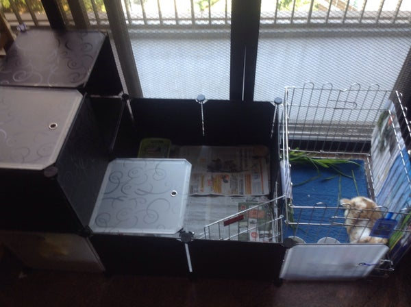 A New Type of Rabbit Cage Design Using Storage Cubes.
