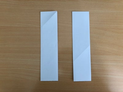 Fold the Two Pieces in Half