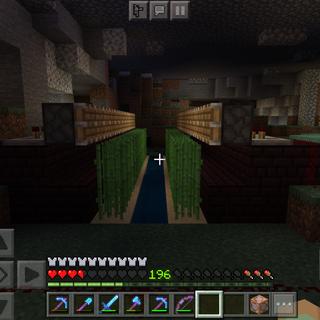 Minecraft Automatic Sugarcane Farm.