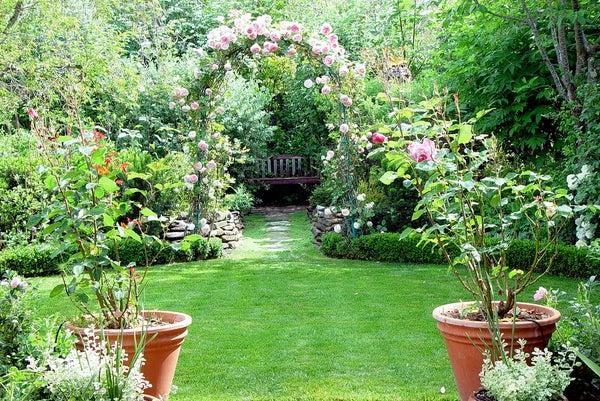 How to Grow Your Own Garden of Eden
