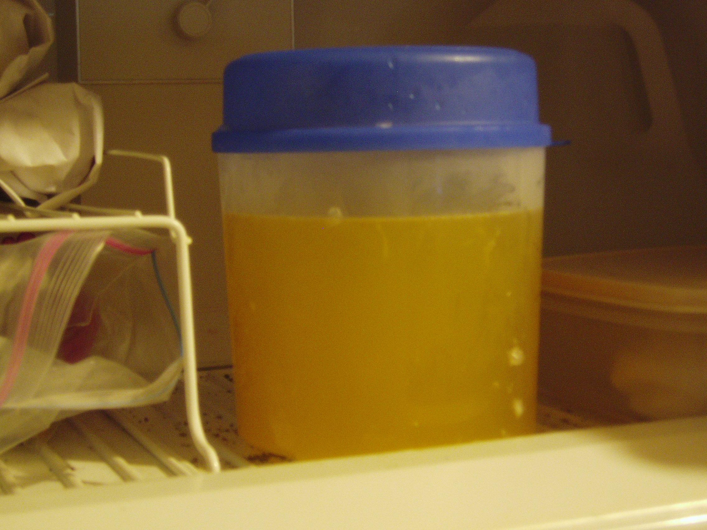 Soft and Easy Lemon Sorbet