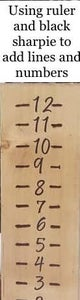 Adding Numbers and Lines