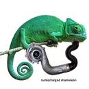 Turbocharged Chameleon