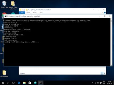 Flashing MicroPython With Esptool.py