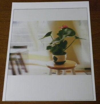 3D Lenticular Printing Using Photoshop and Inkjet Printer