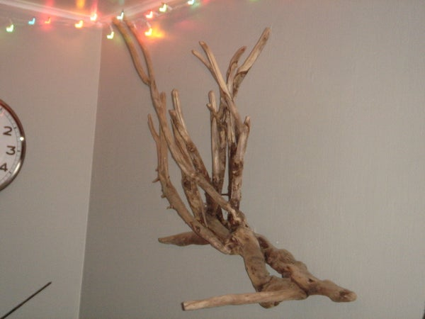 Driftwood Into Art