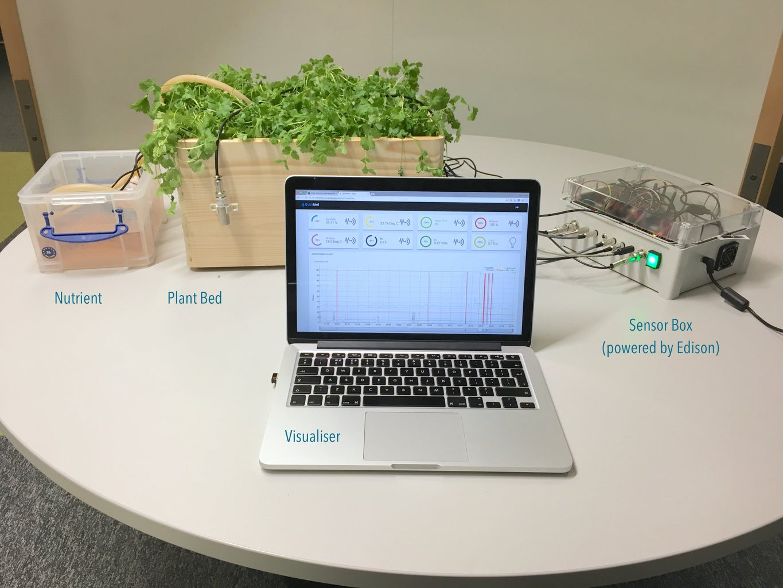Home Hydroponics Using Quickbird