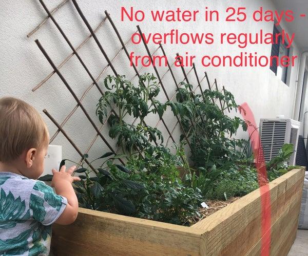 Zero Water Biowicking Bed