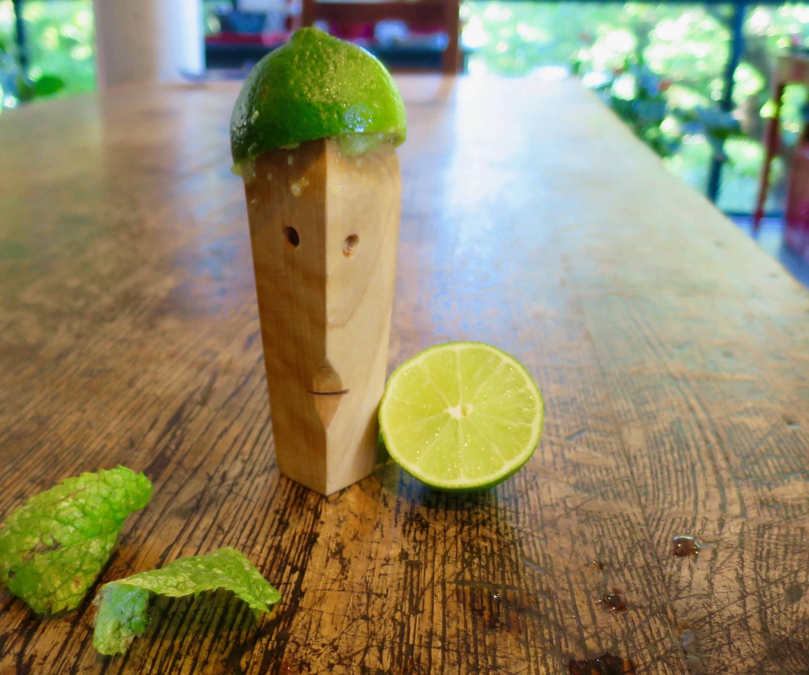 Lemon Juicer - DIY