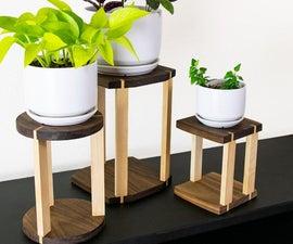 现代植物立场
