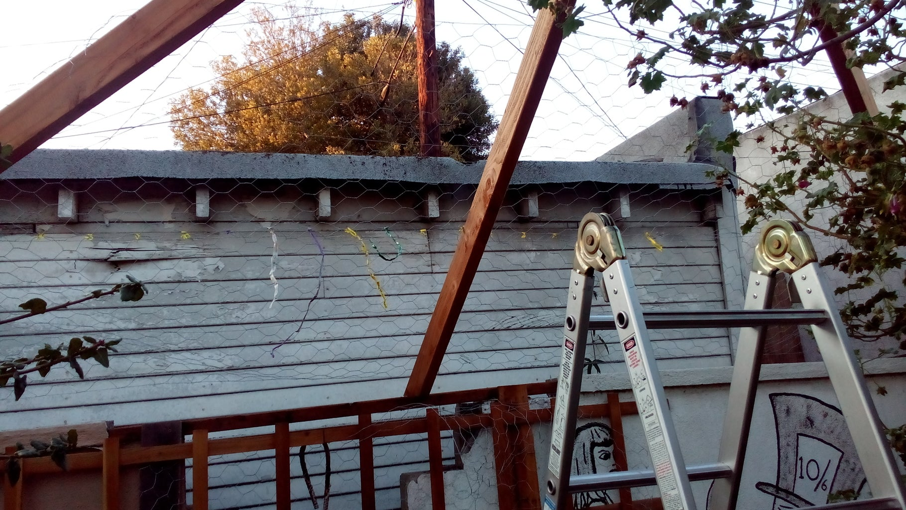 Begin Attaching Chicken Wire to the Top of the Roof