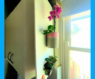 用植物照亮厨房