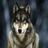 werewolf900