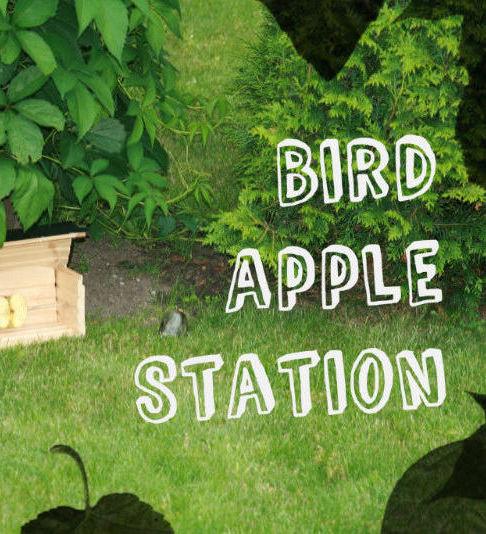 BirdAppleStation