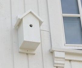 Youtube流鸟盒