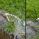 Harvey Emergency Water Pipe Plug