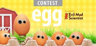 Egg Contest 2016