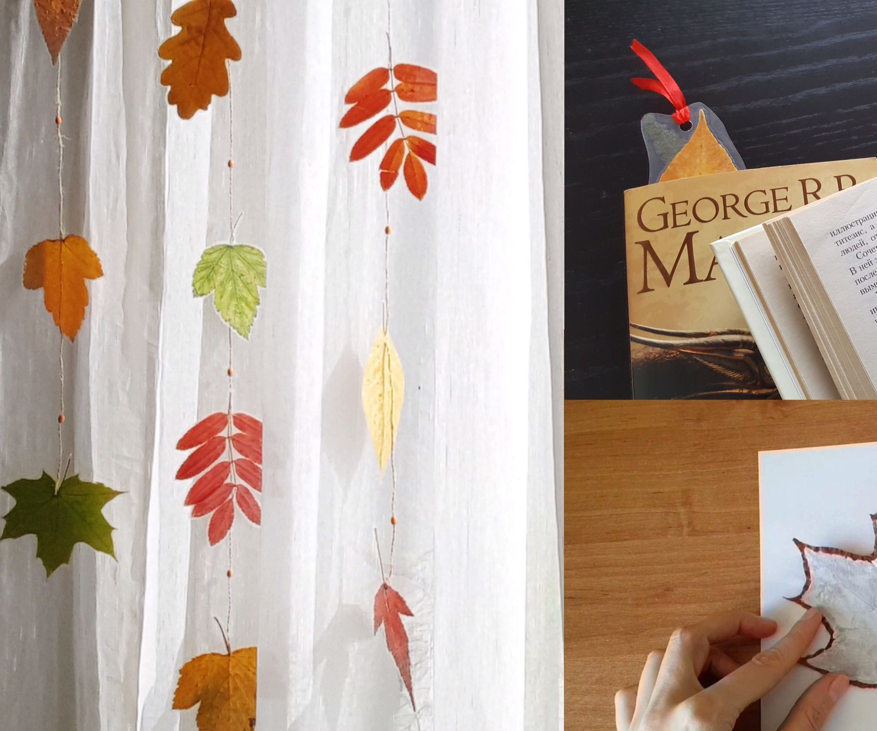 Laminated Leaves for Fall Crafts. No Laminator Needed