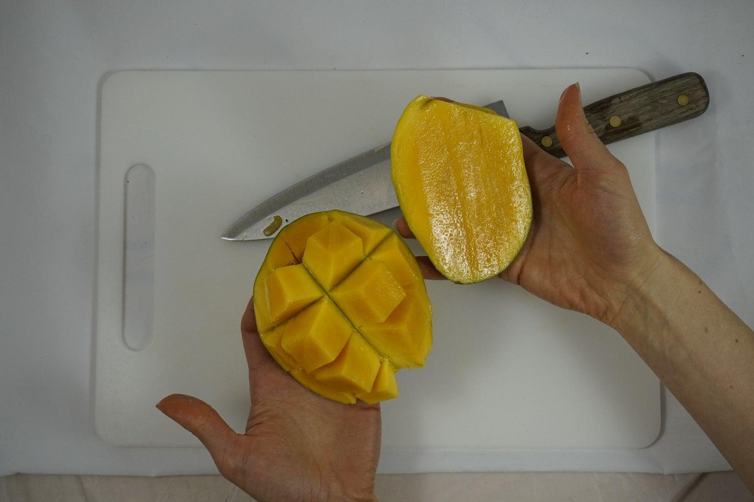Blooming Mango!
