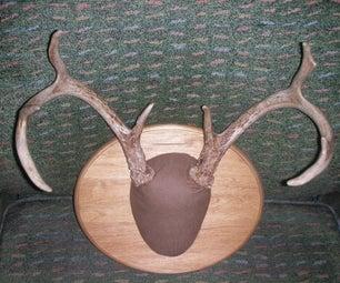 Mounting Deer Antlers