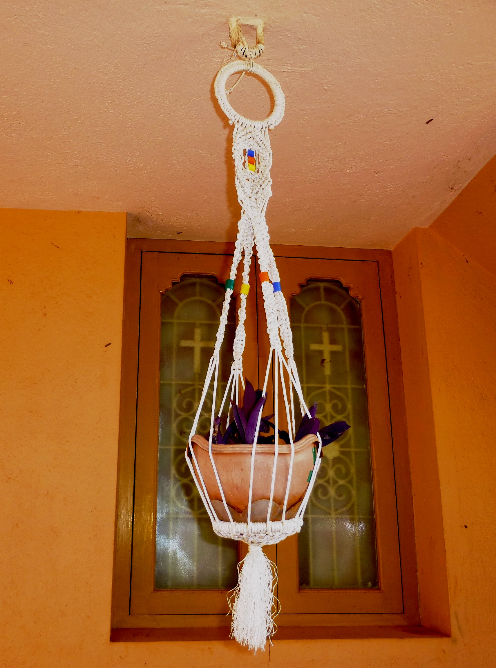 Paracord Plant Hanger With Purple Hearts (Tradescantia Pallida)