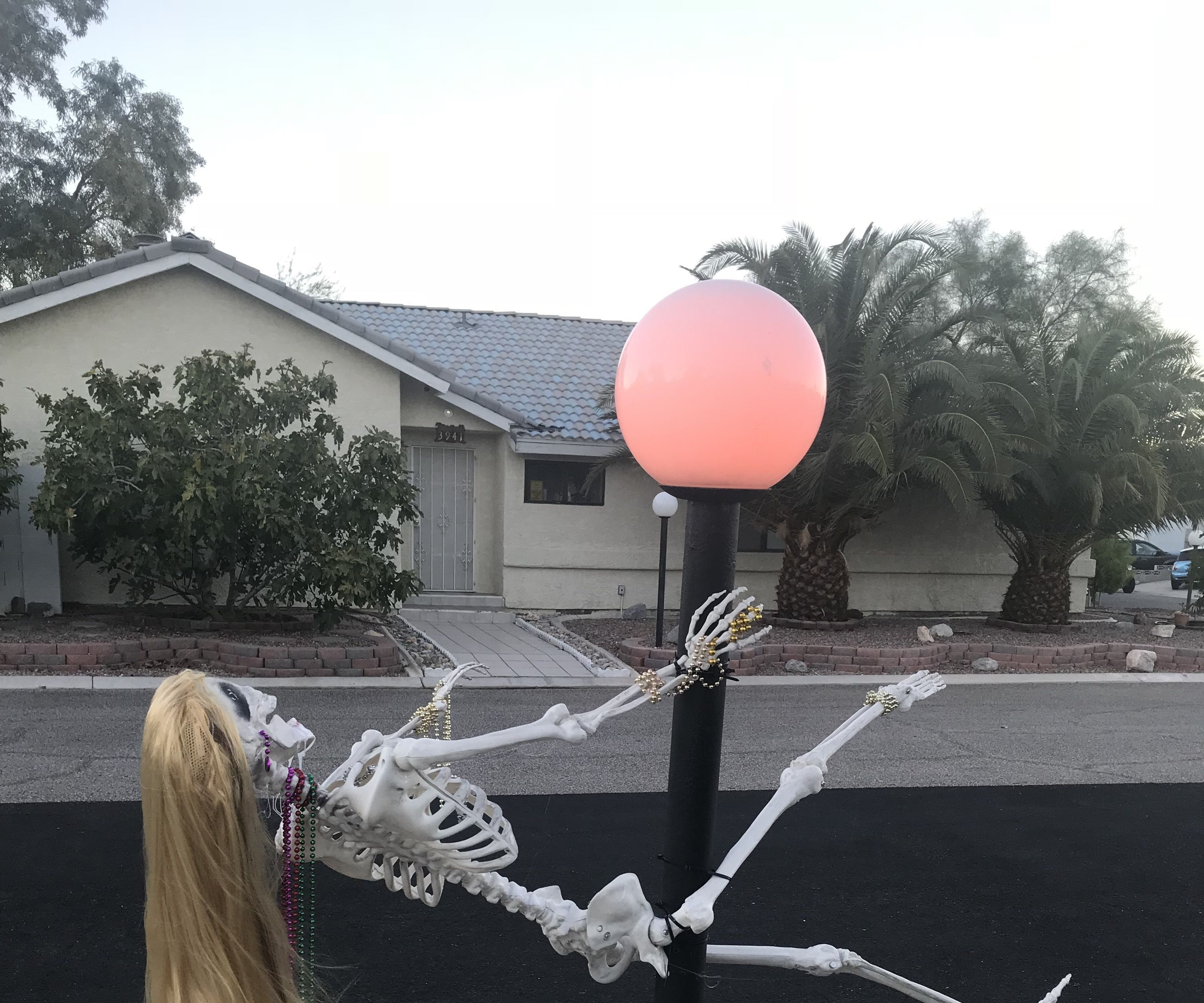 Skeleton Stripper