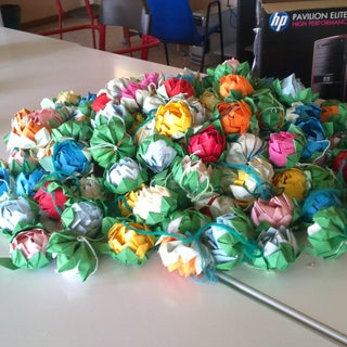 fiori di loto.jpg