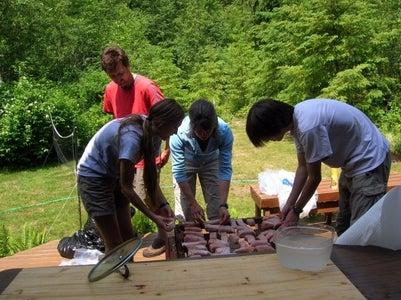Racking the Salmon