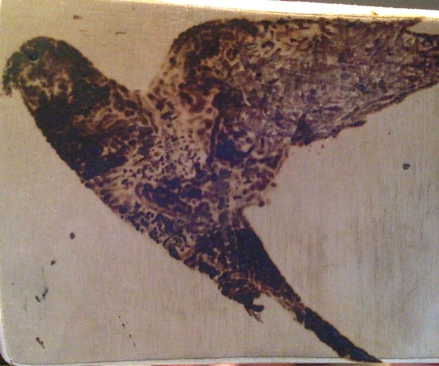 Wood etching with a magnifying glass