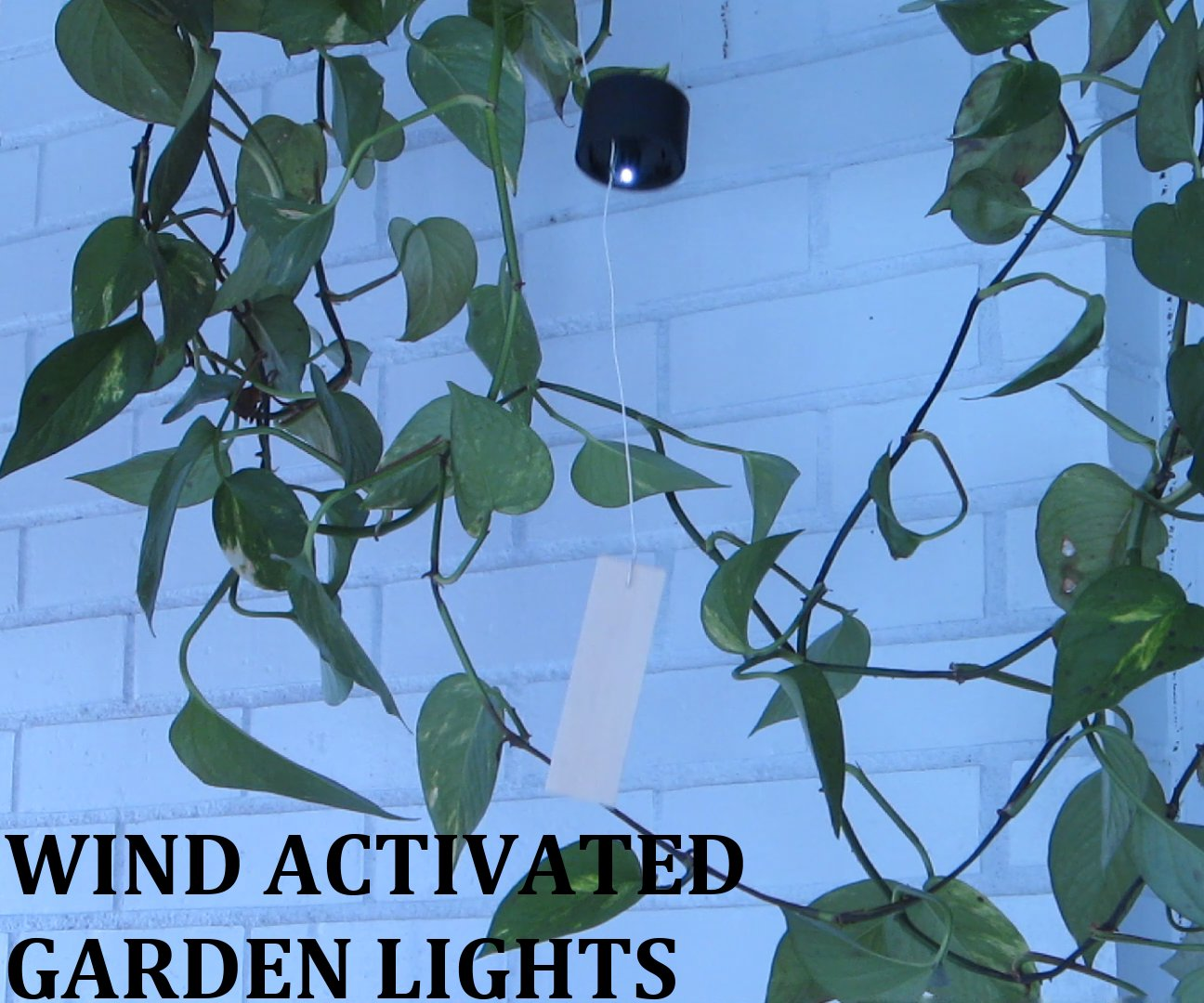 Wind Activated Garden Lights