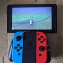 Hatch Eggs AFK Pokemon Sword or Shield for Nintendo Switch With a Rubber Band