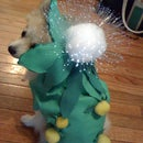 Light-Up Dandelion Doggy Costume