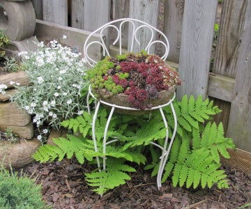 Other Unique Ideas for Container Gardening